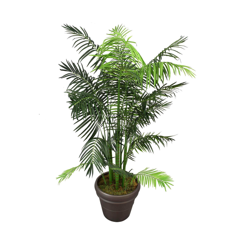 Ethan Allen Ethan Allen Areca Palm Tree price