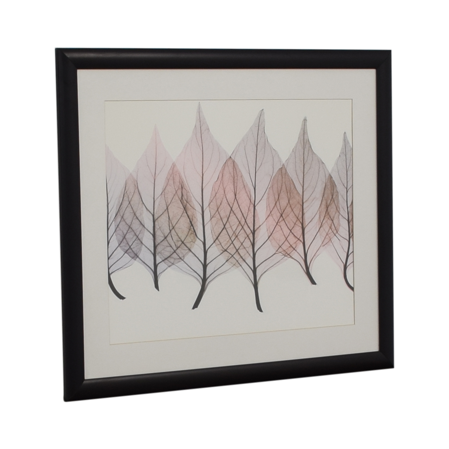 Framed Leaf Print coupon