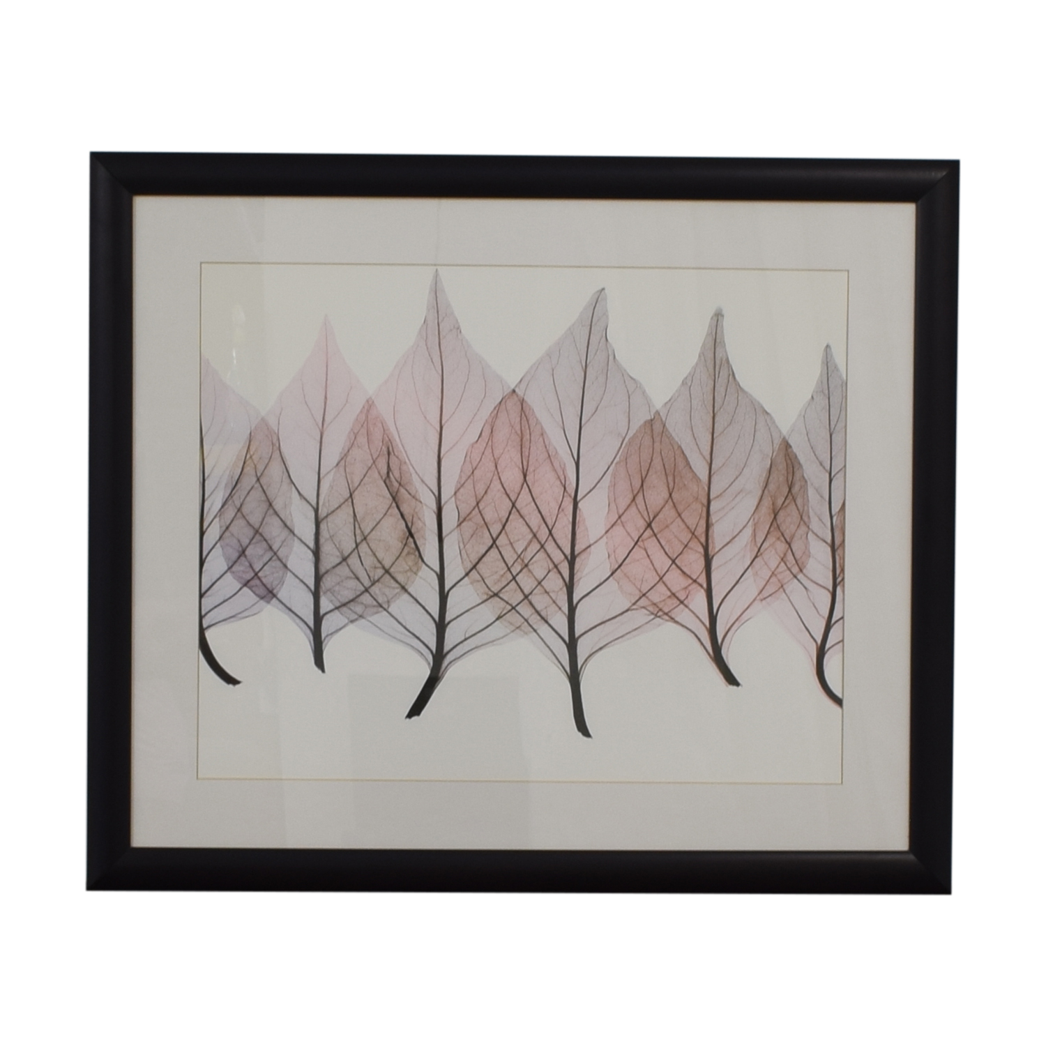Framed Leaf Print Decor