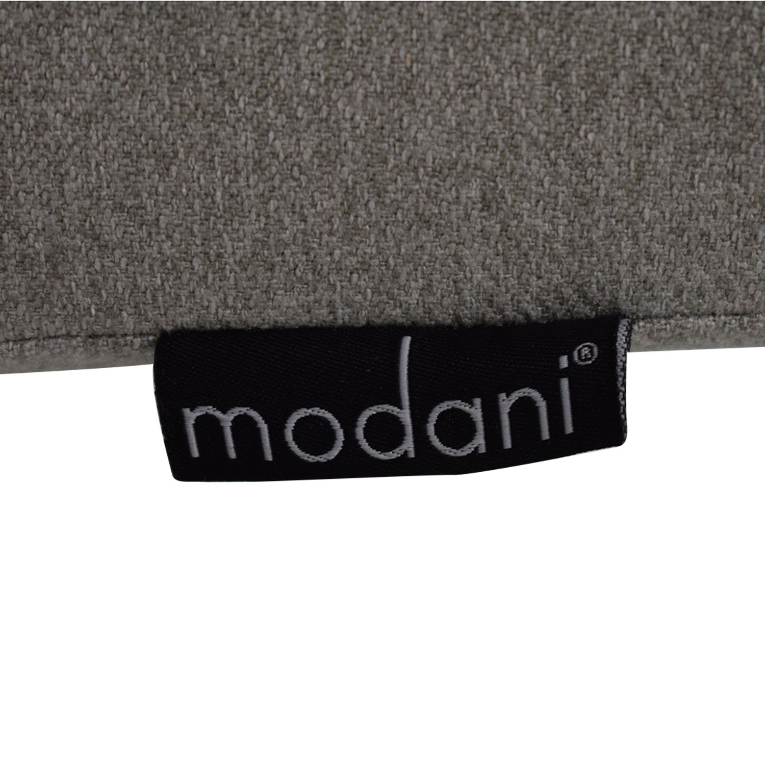 Modani Modern Two Seater Sofa sale